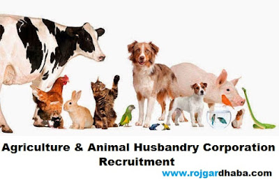 Agriculture & Animal Husbandry Corporation Recruitment, AAHC Job.