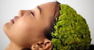 alpukat buat rambut, buah alpukat untuk kesehatan rambut