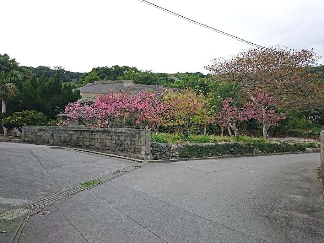 カンジャー堂の写真