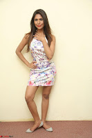 Nishi Ganda stunning cute in Flower Print short dress at Tick Tack Movie Press Meet March 2017 047.JPG