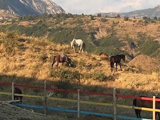Albania, Gjirokaster, Caravan Trails,