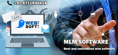MLM Software Services