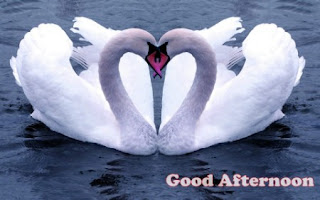 love good afternoon images