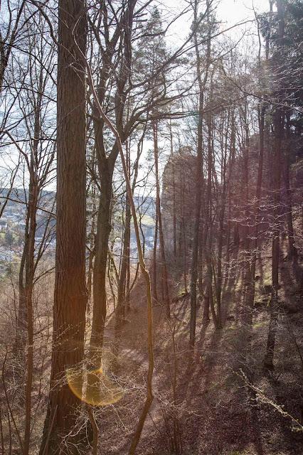 Vulkaneifel-Pfad  Gerolsteiner Felsenpfad  Eifelsteig 09