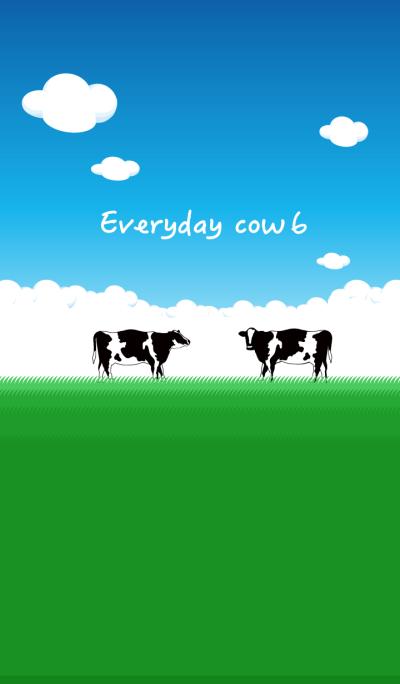 Everyday cow6