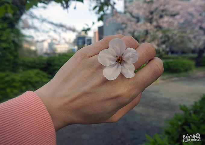 Bague fleur de cerisier