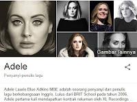 24 Fakta Menarik Adele Yang Mungkin Belum Kamu Ketahui