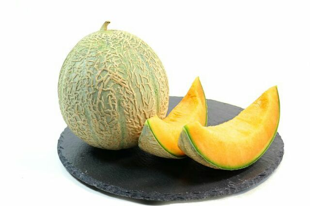 menanam buah melon