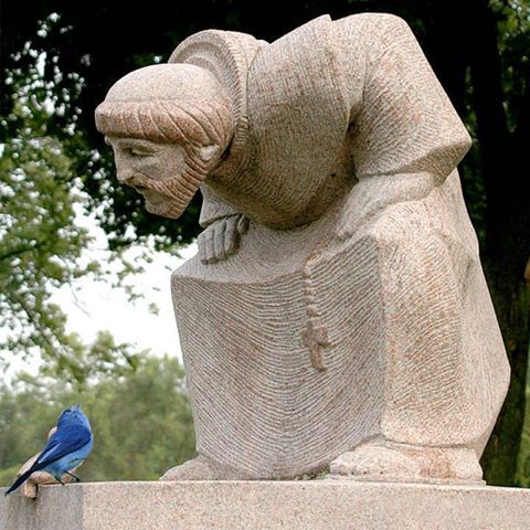Not Dark Yet: St. Francis of Assisi: A Photo Essay