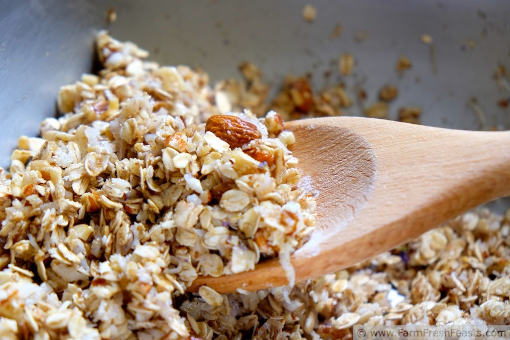 Nutty crunchy granola, sweetened with wild violet sugar and wild violet syrup, is a tasty breakfast or bedtime snack.