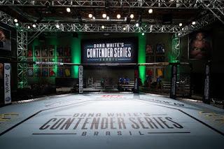 Assistir Contender Uma Chance no UFC 2018 Torrent 720p 1080p Online