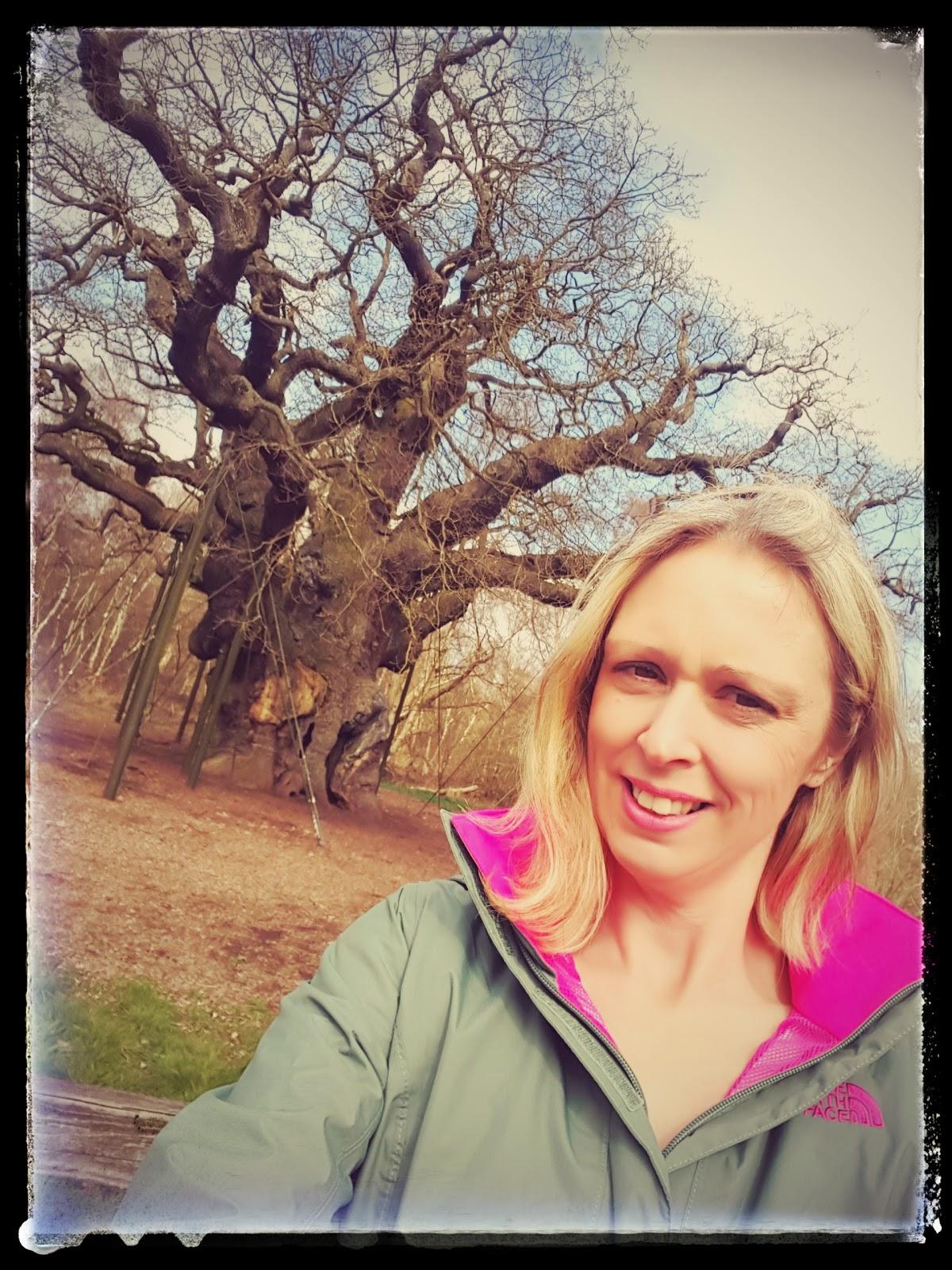 A Walk Around Sherwood Forest: Land Of Robin Hood