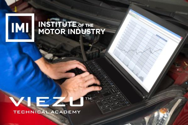 Viezu Classroom Training