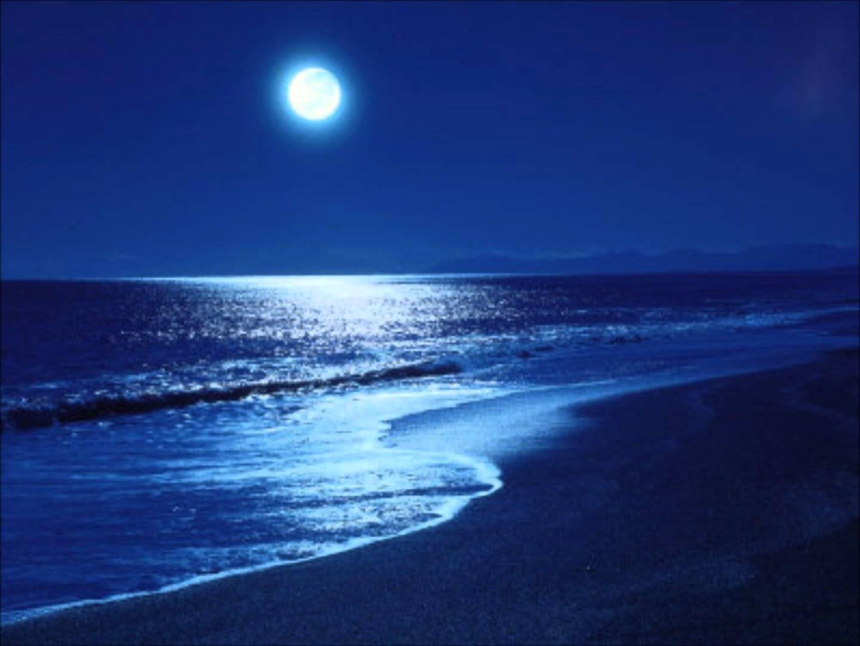"""Résultat de recherche d'images pour """"image du clair de lune au bord de mer"""""""