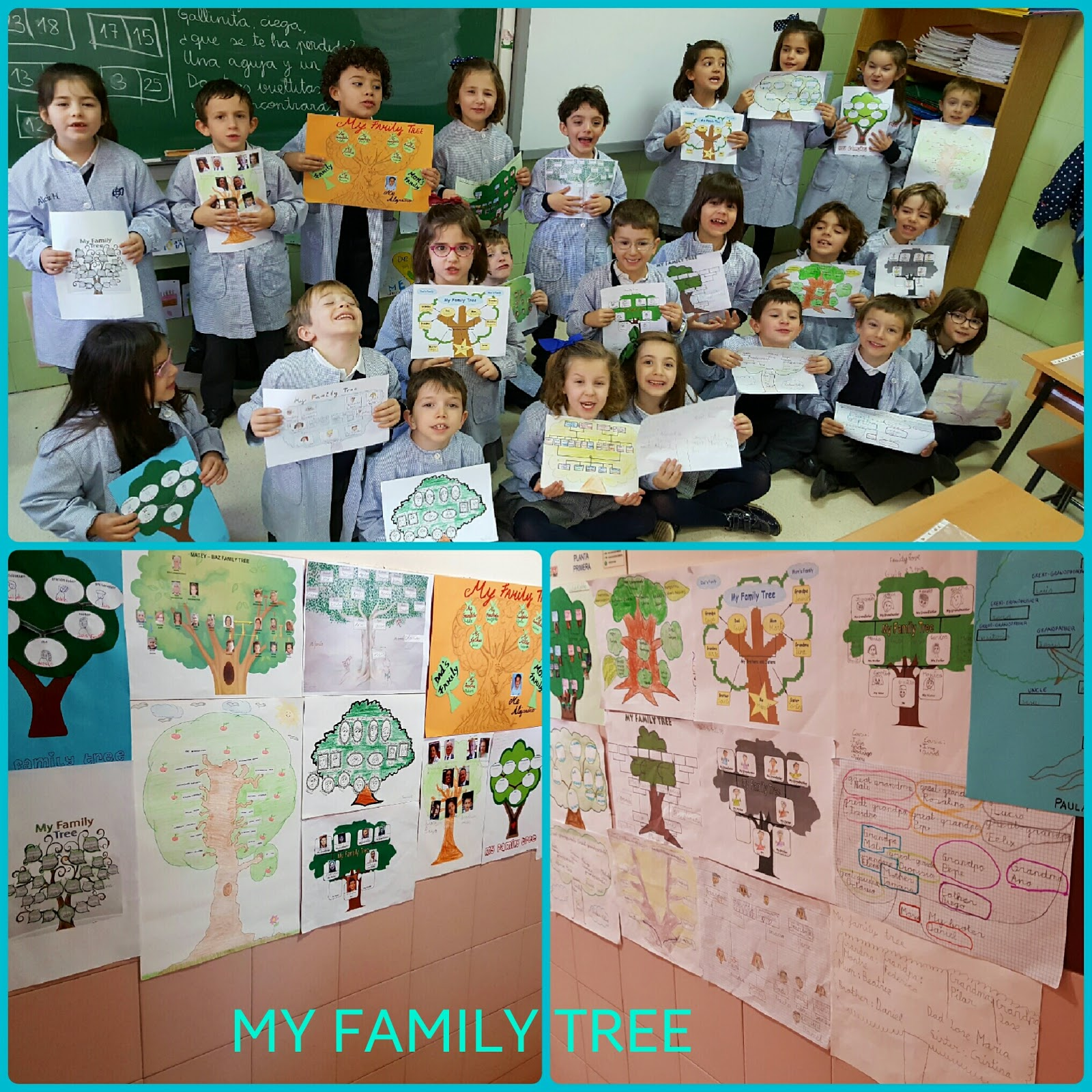 Agustinas Valladolid - 2017 - Primaria 1 - My Family Tree 3