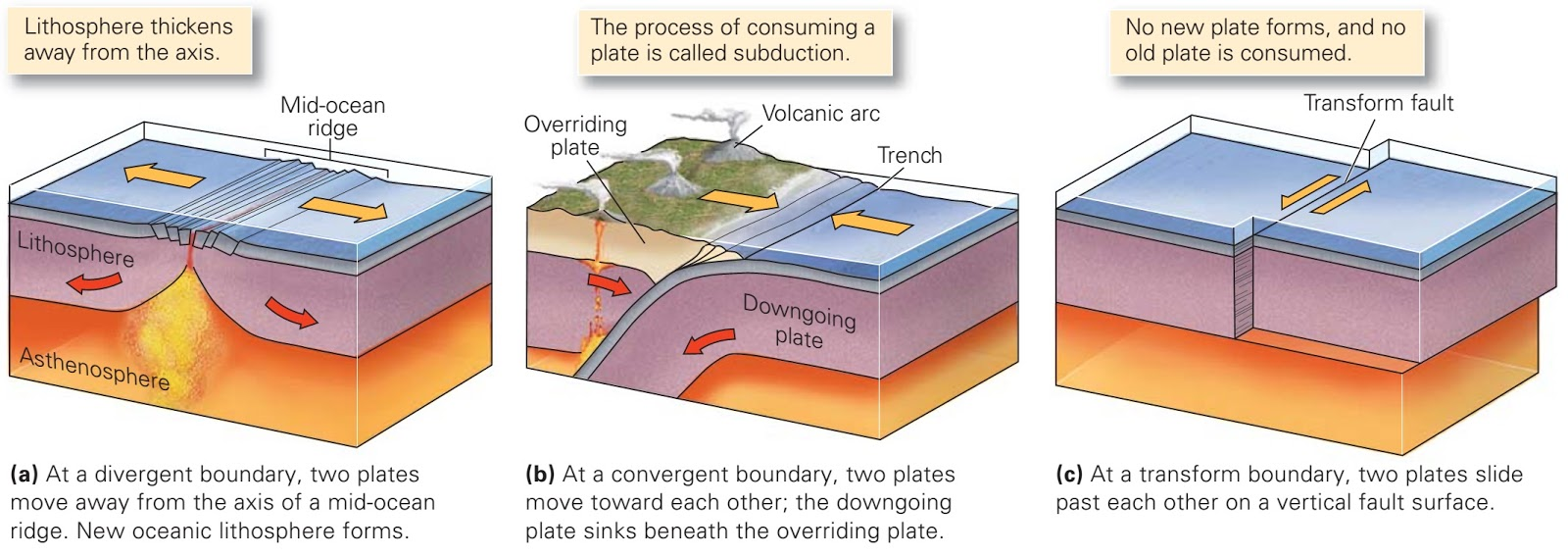 The Three Types Of Plate Boundaries Differ Based On The Nature Of Relative  Movement