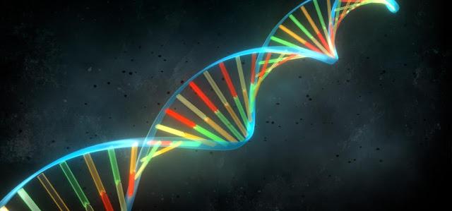 Cambio genetico y biologia