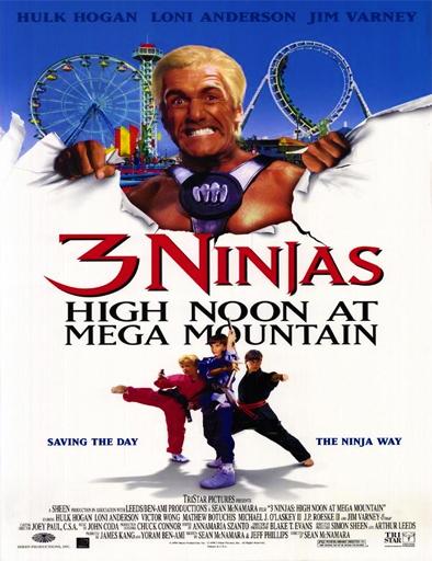 Ver Tres pequeños ninjas 4 (1998) Online