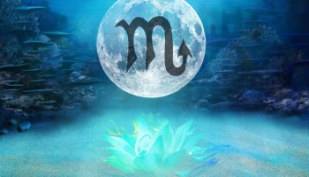 Dance of the Phoenix: A Transformational Full Moon in Scorpio