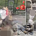 Graphic Photos: Women walk past headless corpses in Raqqa without raising an eyebrow in shocking pics depicting life under ISIS rule