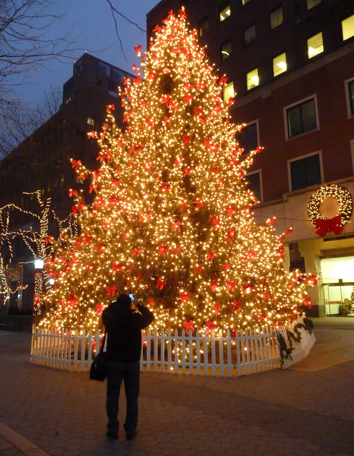mcbrooklyn: Impressive Christmas Tree, Metrotech, Downtown ...