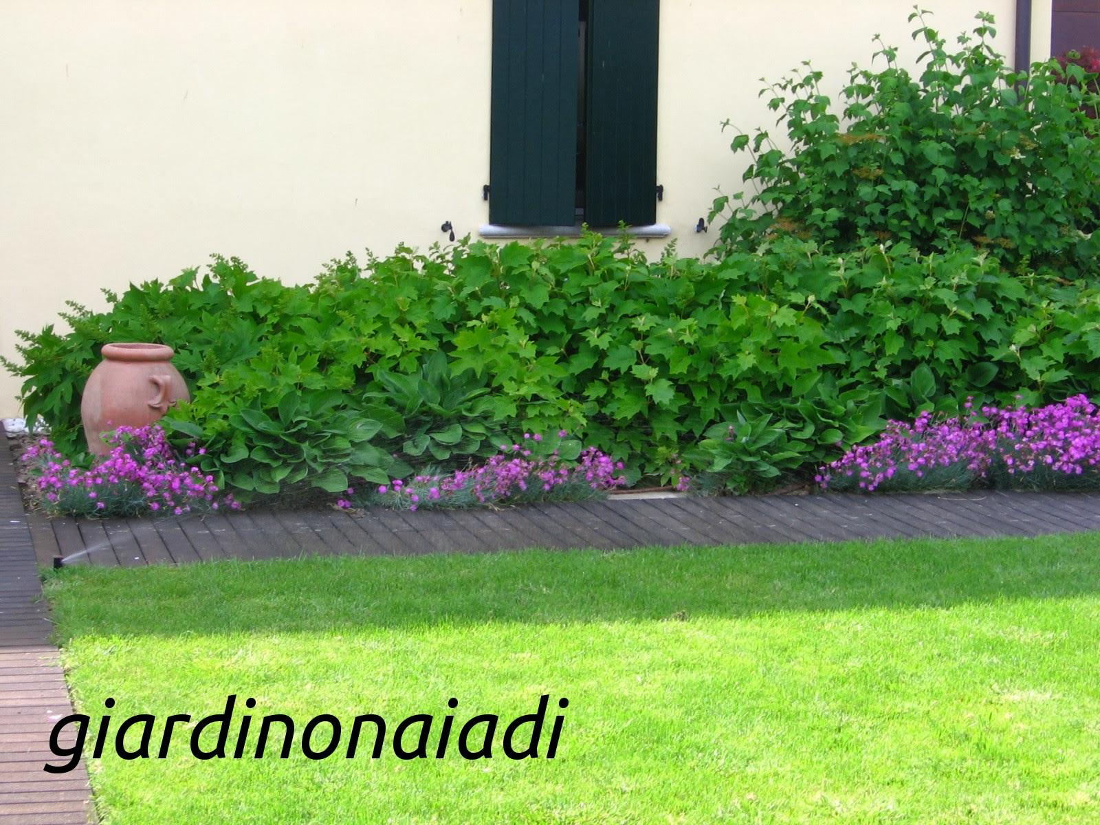Famoso Il giardino delle Naiadi: PROGETTARE BORDURE E AIUOLE prima parte AS38