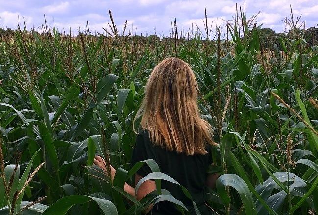A review of lazy daisy jones September