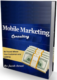 Book Cover for Mobile Marketing Consulting
