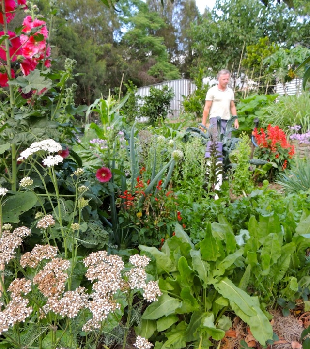 Our Permaculture Life: Morag's Seven 'do-nothing