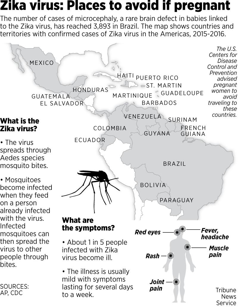 zika virus symtom