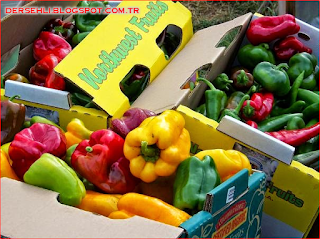 besinlerin tazeliği ve sağlığı