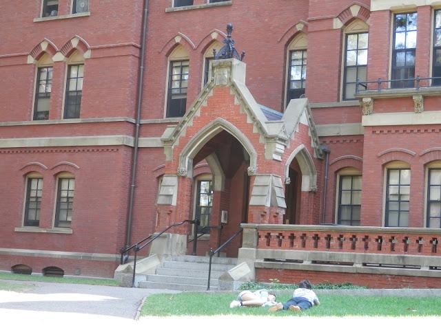 Visite de l'Université d'Harvard