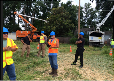 Pepco Tree Trimming Puts Area Neighborhoods On Edge