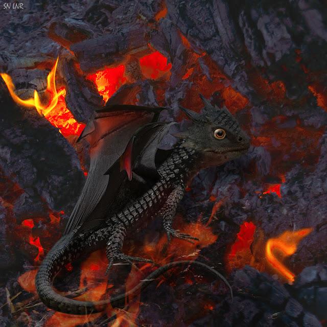 Детёныш Дракона