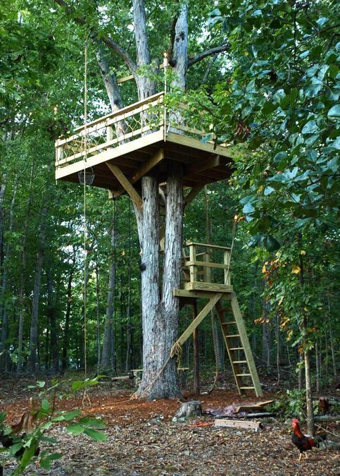 casas en árbol hechas a mano