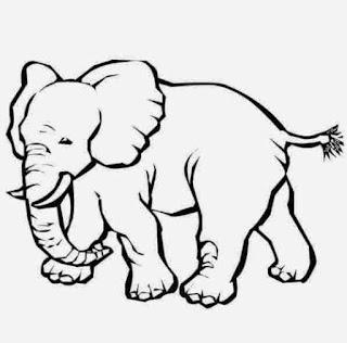 Gambar Sketsa Mewarnai Gajah Sebagai Media Belajar Anak 20165
