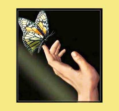 Cuento La mariposa y el hombre