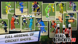 Real Cricket 18 1.1