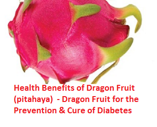Health Benefits of Dragon Fruit (pitahaya)  - Dragon Fruit for the Prevention & Cure of Diabetes