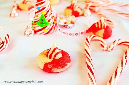 candy cane cookies | roxanashomebaking.com