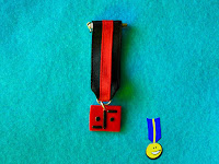 Medalla logo serie V