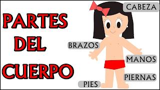 http://www3.gobiernodecanarias.org/medusa/contenidosdigitales/programasflash/Infantil/Cuerpo/Cuerpo/cuerpo1.swf