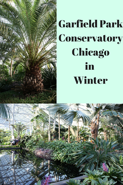 Garfield Park Conservatory Chicago in Winter