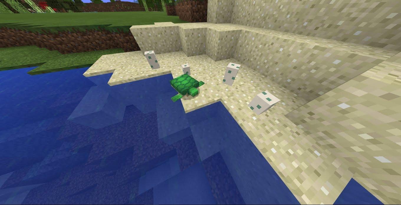 minecraft turtle eggs not hatching
