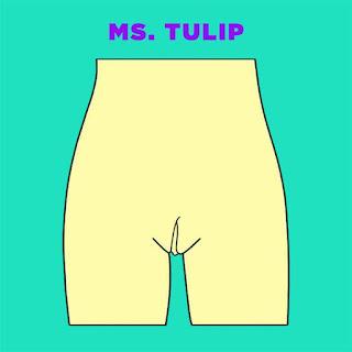 Tipos de vaginas - qual será o seu? Ms. Tulip