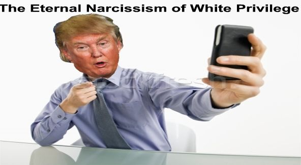Image result for big education ape trump