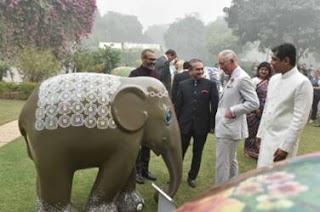 ED-investigates-nirav-mehuls-120-companies