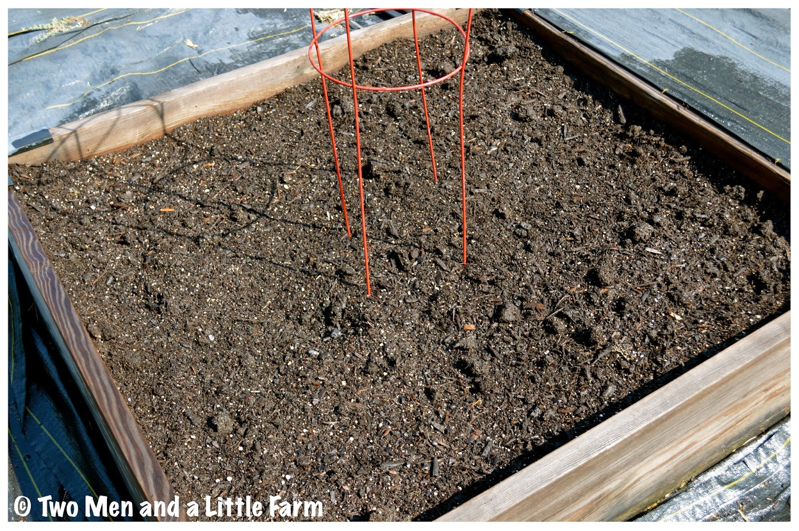 How Deep Does Soil Need To Be In Raised Bed