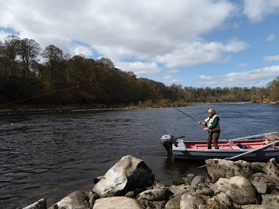 Salmon Fishing Scotland Prospects for Tay, Perthshire w/c 13th February 2017.