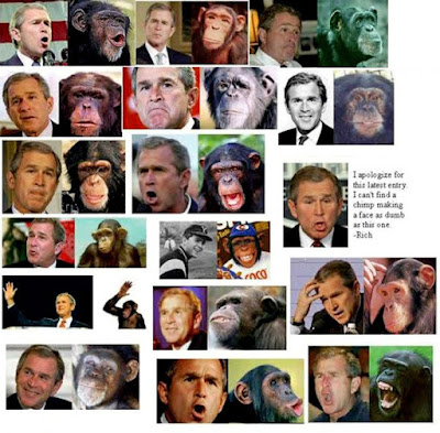 Bush vs. Ape
